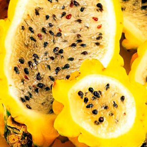 Pitaya jaune à chair jaune